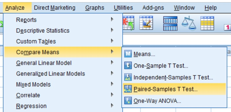 Paired t-test menu in SPSS