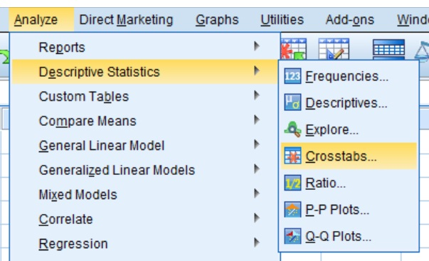 Pearson's chi-square test menu in SPSS
