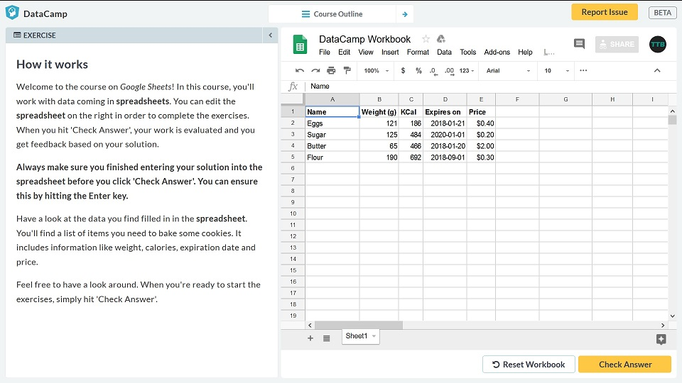 Spreadsheet Basics DataCamp Overview