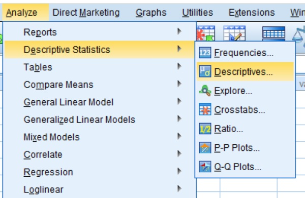SPSS descriptives menu option